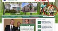 ST 8/2012 S jak strona, p jak plagiat