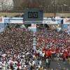 ST 5(73)/2013 Silna reprezentacja na Orlen Warsaw Marathon