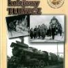 """ST 11 (79)/2013 """"Węzeł kolejowy TŁUSZCZ"""" – czy będzie dodruk?"""
