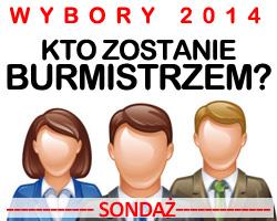 sondaz_przedwyborczy_2014_banner_250x200