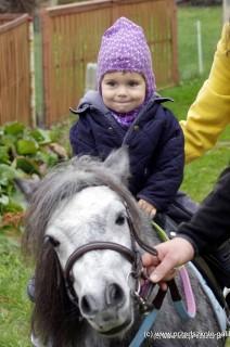 Wizytę kucyka Basi dzieci wspominają do dziś. Nawet maluszki ze żłobka mogły spróbować swoich sił w jeździe konnej!